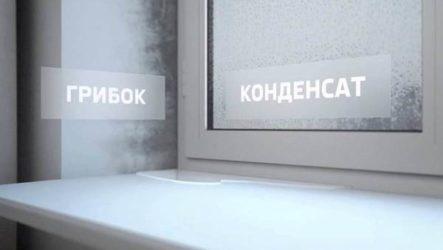Конденсат на пластиковых окнах. Причины появления и способы устранения конденсата