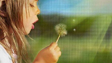 Сетка антипыльца. Описание, особенности, применение и цена сетки антипыльца